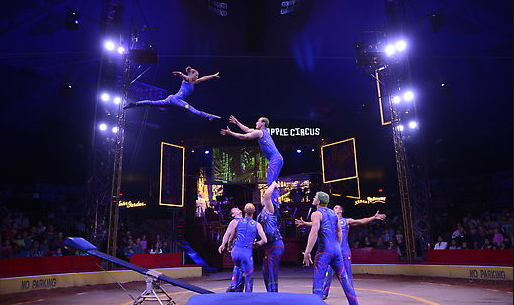 The Big Apple Circus Returns with 'Luminocity' for New York City Families