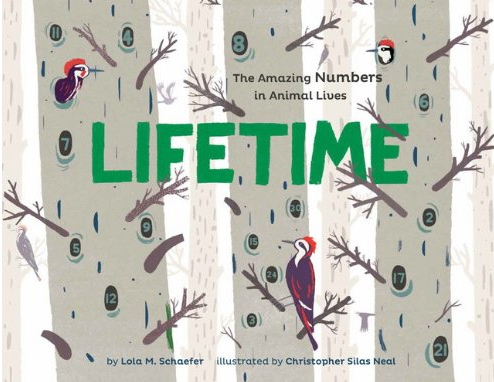 Book Reading: Artist Christopher Silas Neal Brings Nature, Numbers and Art in 'Lifetime'
