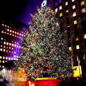 2015 Christmas Tree Lighting Ceremonies