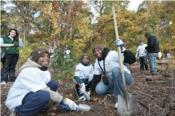 Community Service Projects around NYC for Kids