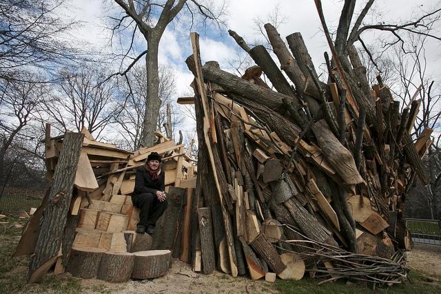 Tree House Installation: Sandy Remix