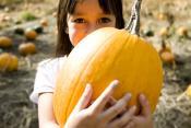 Go Full Out Pumpkin This Season