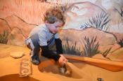Archaeology Zone: Discovering Treasures From Playgrounds to Palaces